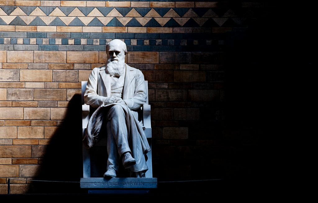 Charles Darwin statue with one of London's finest beards