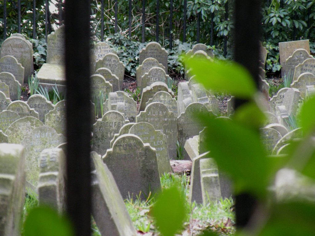 Hyde Park pet cemetery, one of the most unusual London cemeteries